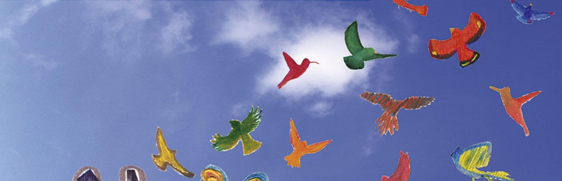Onze edicions d'experiències creatives per la salut mental